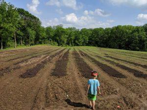 Four Winds Farm Grows Hemp with Biochar & Compost Mixture