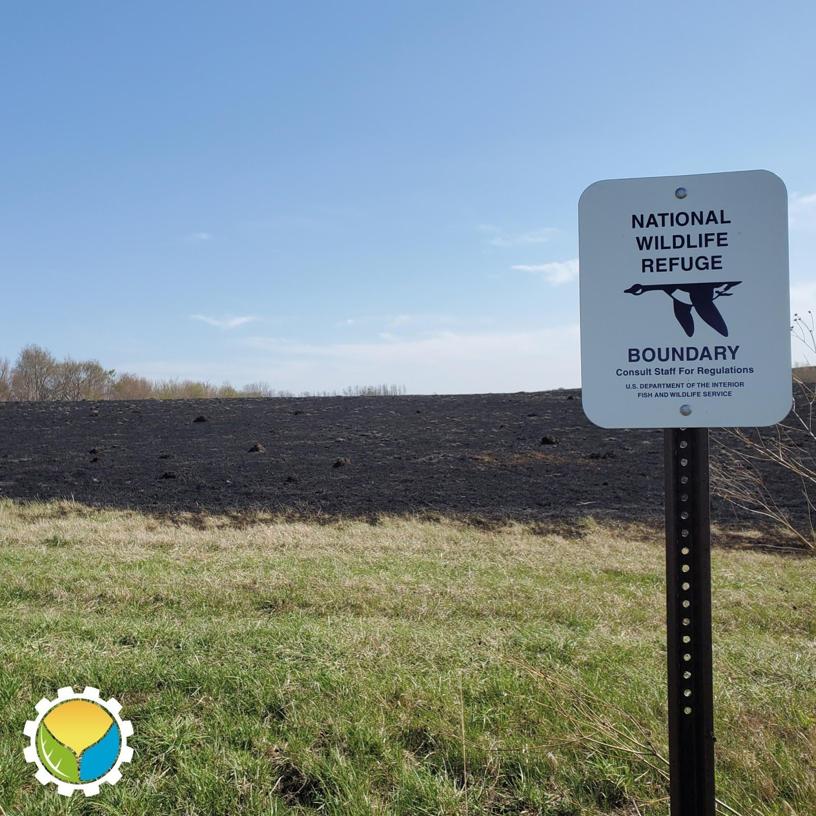 """Abundant and Stable Mollisols: The """"Terra Preta"""" of the Midwest US"""